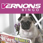 Vernon Bingo